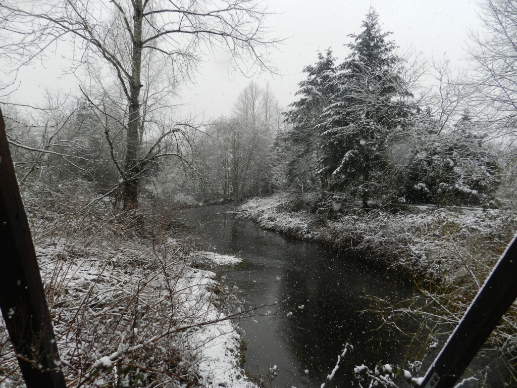 snow day from the bridge